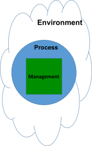 Viable System Model VSM - Main Components
