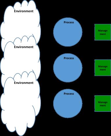 Viable System Model VSM - Multiple Processes