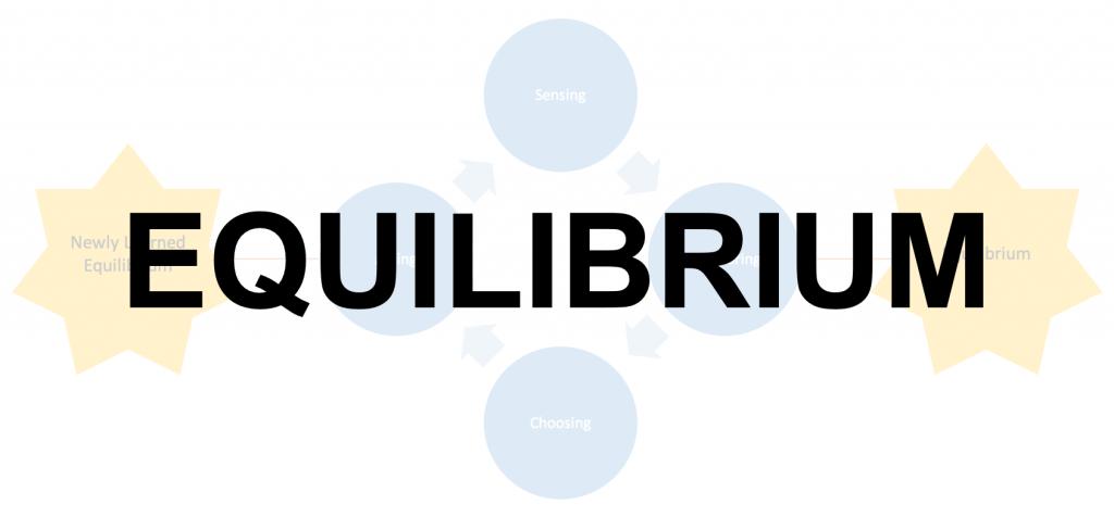 Basic Notions - Equilibrium
