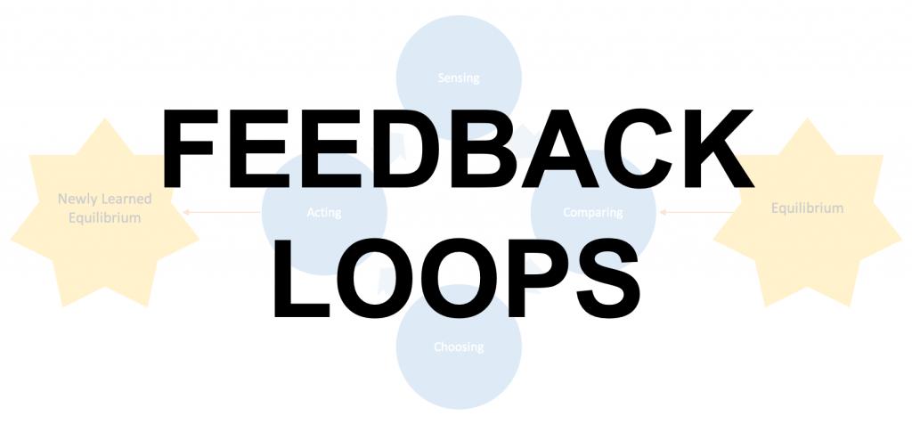 Basic Notions - Feedback Loops