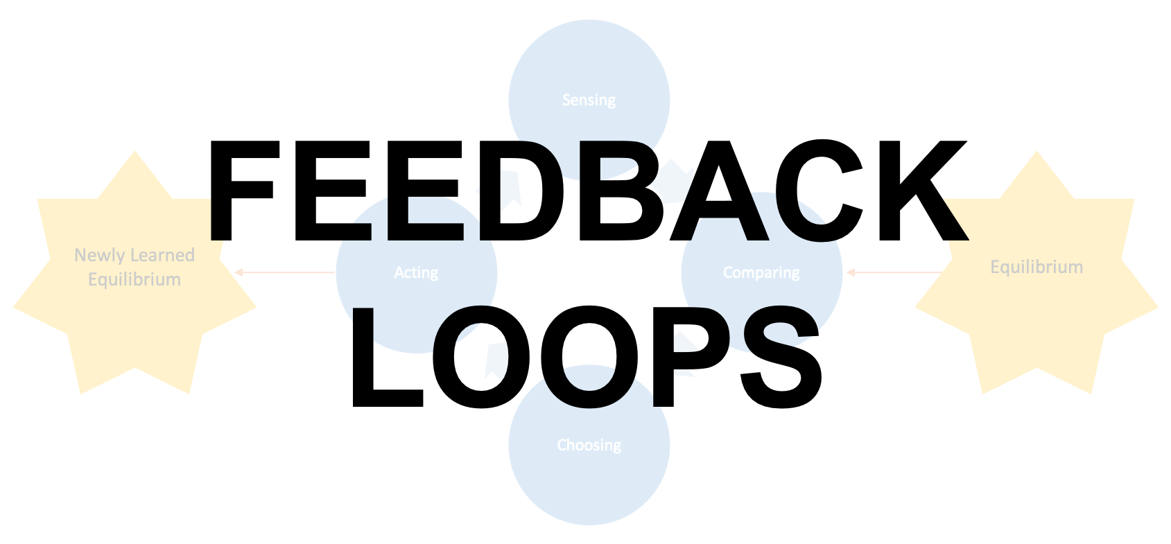 Basic Notions - Feedback Loops